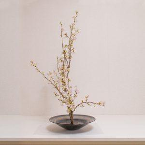 お弟子さんの作品、生花正風体、桜一種生